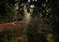 Игра The Forest для Oculus Rift научит вас выживать в лесу